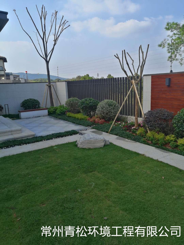 别墅庭院绿化 第4张 别墅庭院绿化 常州绿化养护 第4张