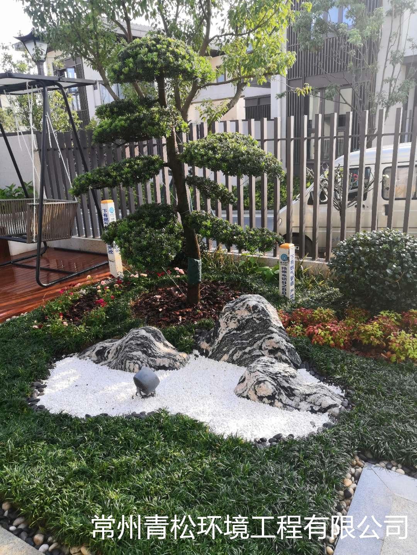 别墅庭院绿化 第8张 别墅庭院绿化 常州绿化养护 第8张